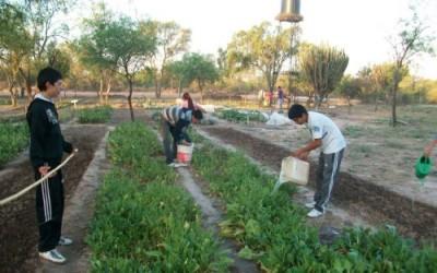 La agricultura como una forma de sustento