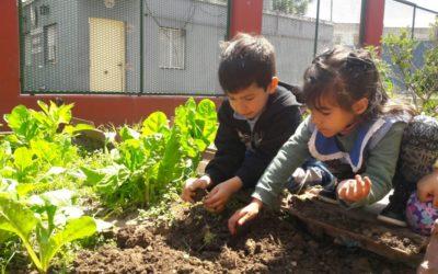 Bruno Matarazzo y Asociados en labor solidaria con Fundación Huerta Niño