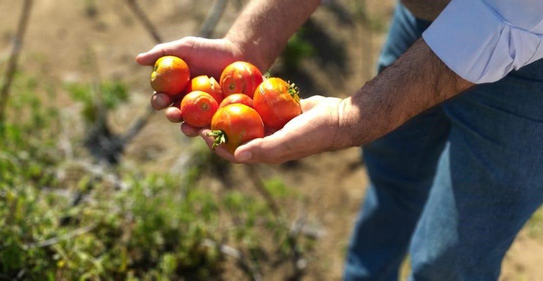 ¡El ciclo escolar inicia con grandes cosechas!