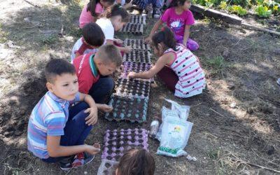 ¡La escuela Nº563 de Chacho empezó el año construyendo la huerta!