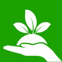 Plantin