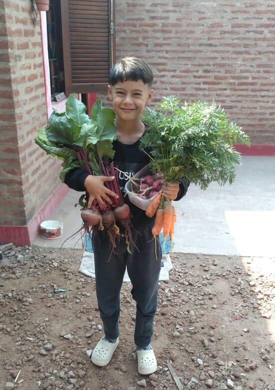 Niño con cosecha