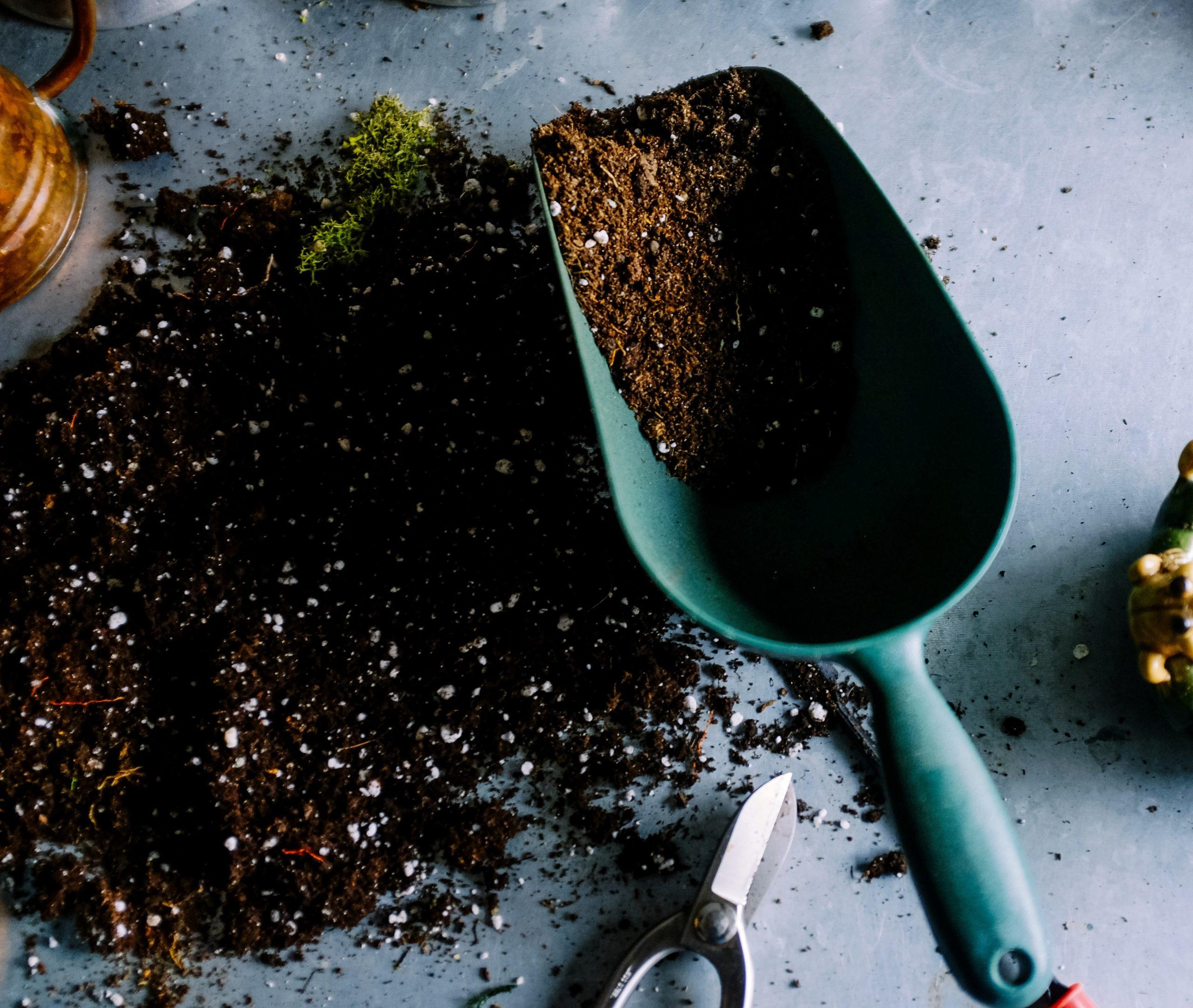 Pala y tierra para siembra